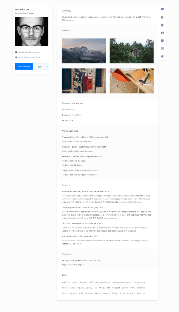 Free Professional Online CV Template 2