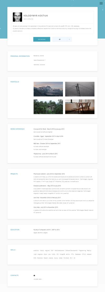 Premium Online CV Vorlage