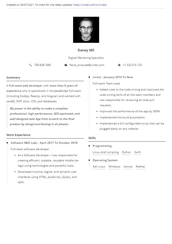 Libre Modèle de CV professionnel 2